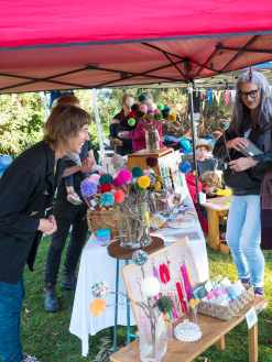 Bendigo Bank Market Day (2018)